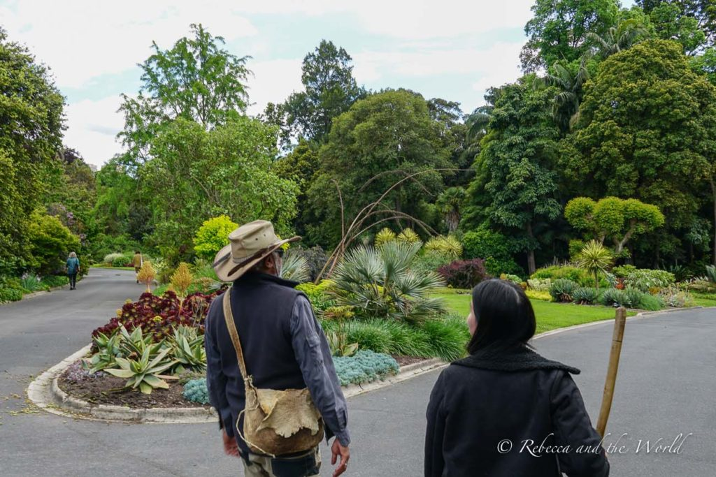The Aboriginal Heritage Walk in Melbourne's Royal Botanic Gardens is a fascinating way to learn about Indigenous Australian culture