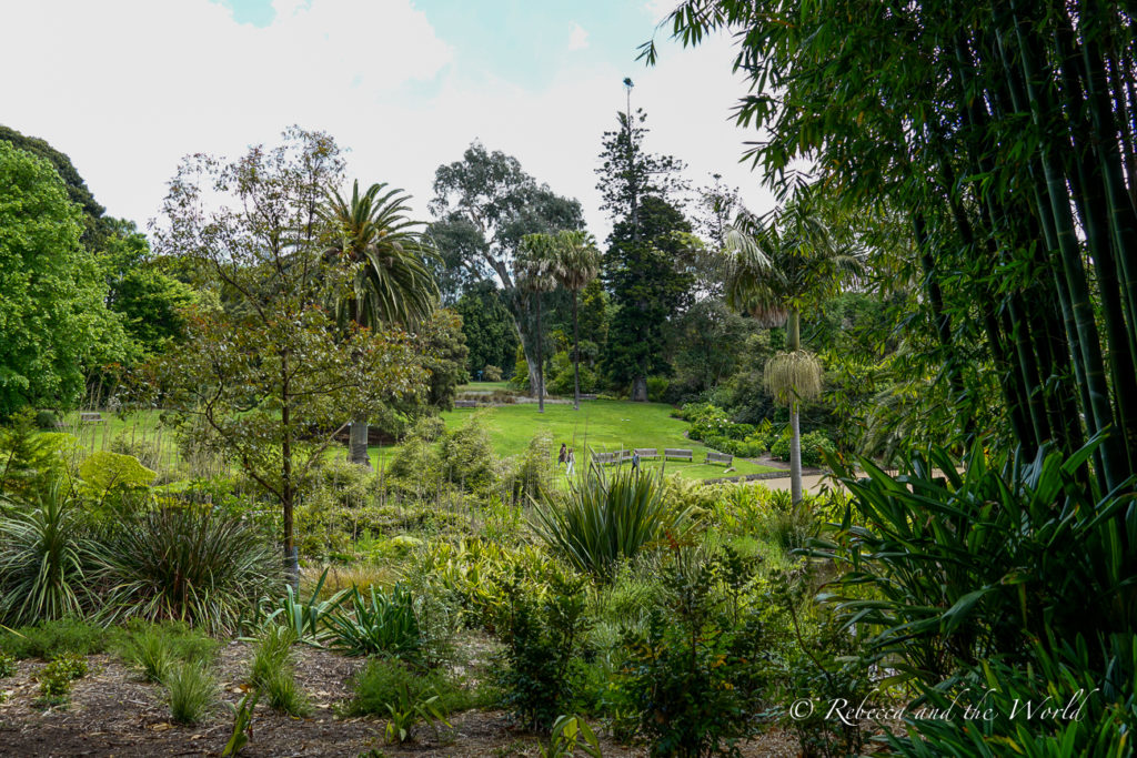 The Royal Botanic Gardens are a Melbourne must do - pack a picnic and come here on a sunny day