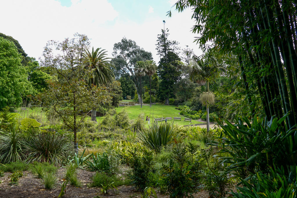 If the weather's nice, a visit to the Royal Botanic Gardens should definitely be on your 5 days in Melbourne itinerary